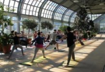 Free Yoga at Garfield Park Conservatory