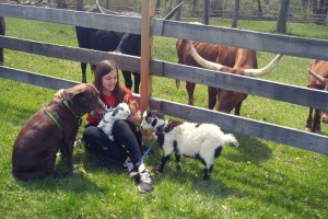 Lebanon Valley College Biology graduate Kayla Miller sits with animals on a farm