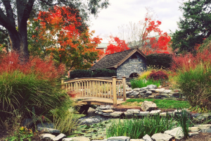 The Peace Garden at LVC during the fall