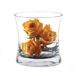 Glass Ice Bucket / Vase