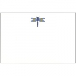 Dempsey & Carroll Dragonfly Cards and Lined Envelopes