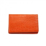 Mandarin Caiman Crocodile Card Case