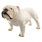 Nymphenburg English Bulldog  The Elector Max II Joseph succeeded to the Bavarian throne at age 18 on the death of his father, Karl Abrecht in 1745.  The country had been devastated by the war of Austrian Succession, and Max III Joseph concluded a peace treaty with the Hapsburgs to prevent further damage.  In 1747, he married Maria Anna Sophie of Saxony, granddaughter of Augustus the Strong (the founder of the Meissen Manufactory).  Under Max III Joseph\'s reign Bavaria enjoyed an economic and intellectual revitalization.  The Electoral Porcelain Factory was begun in 1747 east of Munich, and fourteen years later moved to the Nymphenburg Palace where it remains today.  The Manufactory had gained universal acclaim by 1767�competitors were studying Nymphenburg\'s products in order to learn the factories\' techniques.  