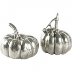Pumpkin Salt & Pepper Set