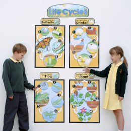 Bulletin Board Sets & Cutouts
