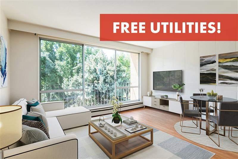 Lethbridge Alberta Apartment For Rent