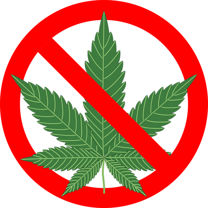 Zero Tolerance Marijuana Policy