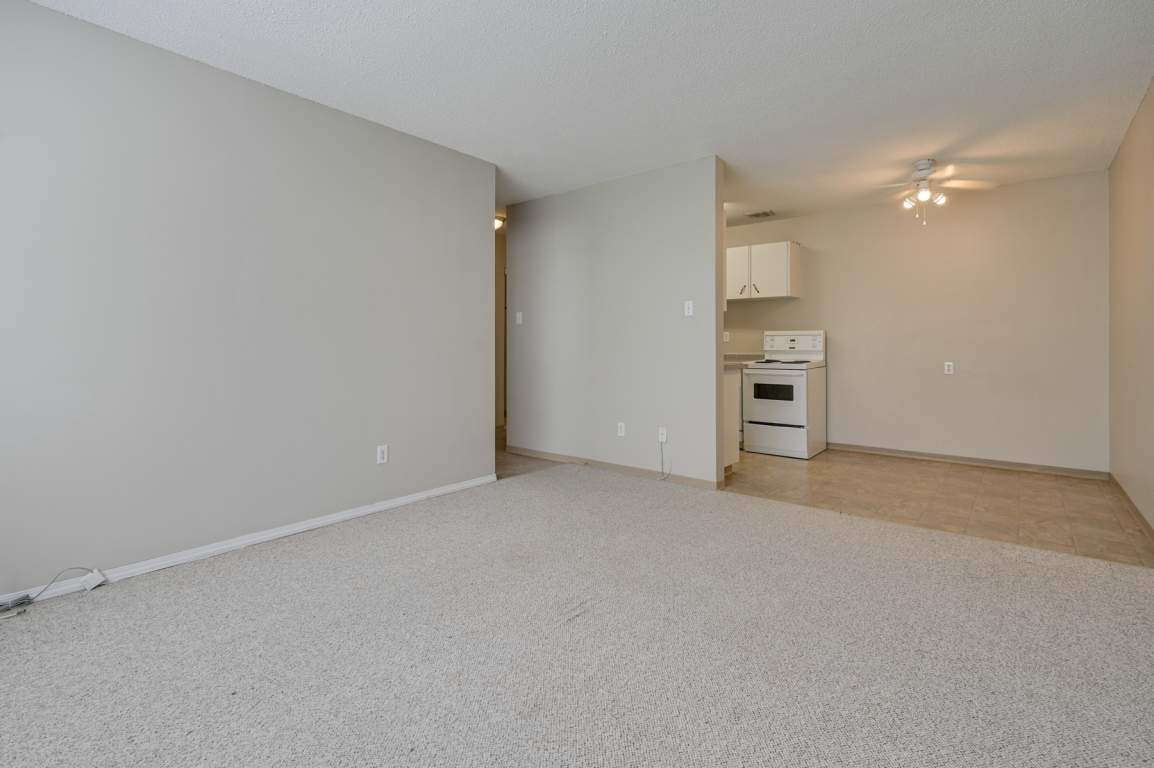 Edmonton Apartment