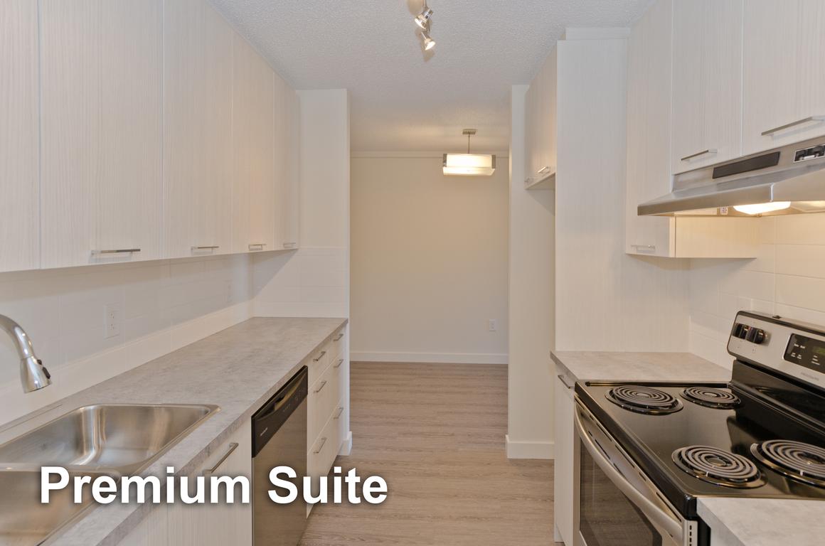 Calgary Du centre 2 chambre à coucher Appartement