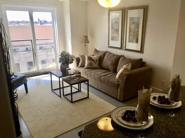 1 Bedroom Apartments 1 Bedroom Apartment Kingston Ontario