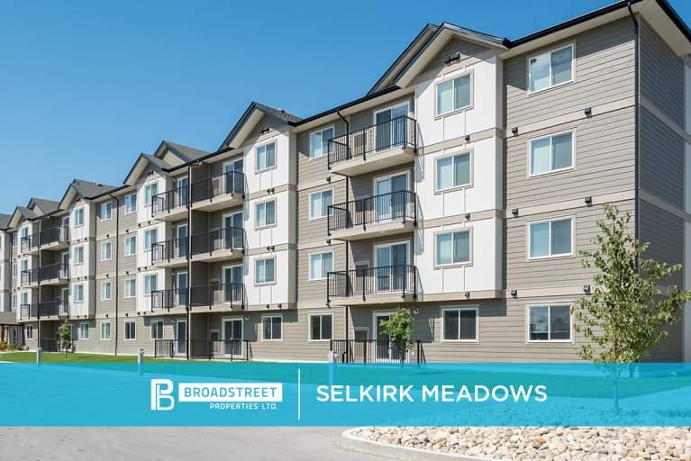 Selkirk Meadows