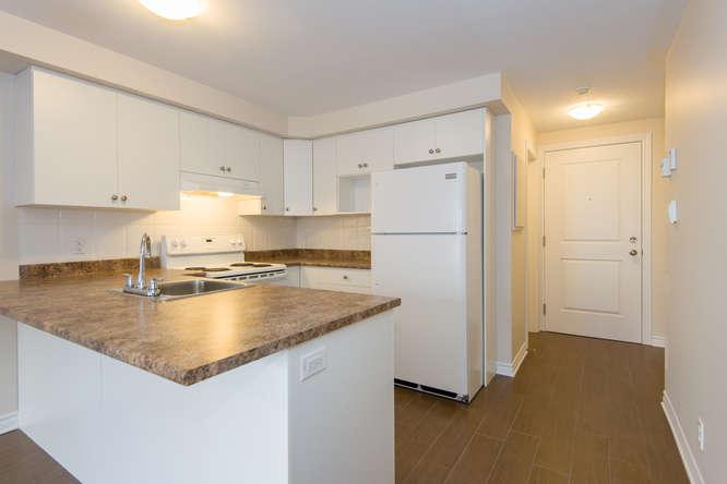 Kitchen - 1 Bedroom + Den