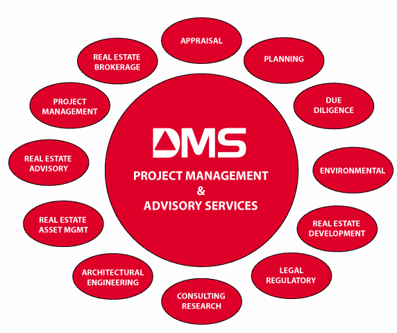 Project Management & Advisory Services