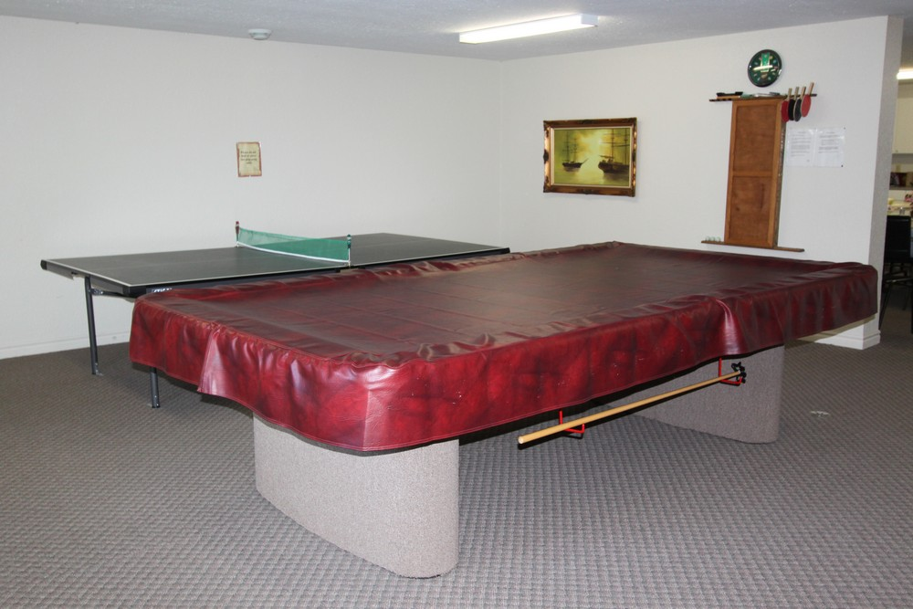 Apartments for Rent Sarnia - 1295 Sandy Ln - Pool Table in Common Room
