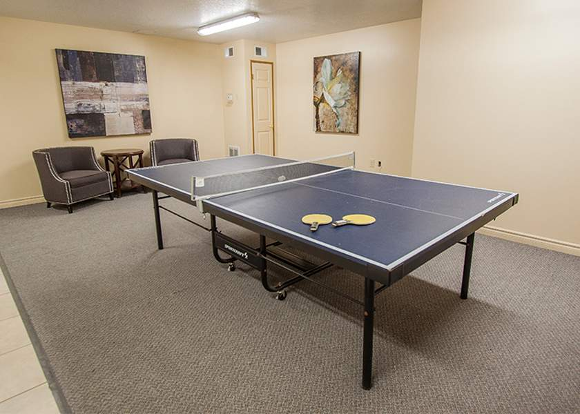 The Aster at the Royal Gardens - 130 Plains Road Burlington Ontario - Ping Pong Table