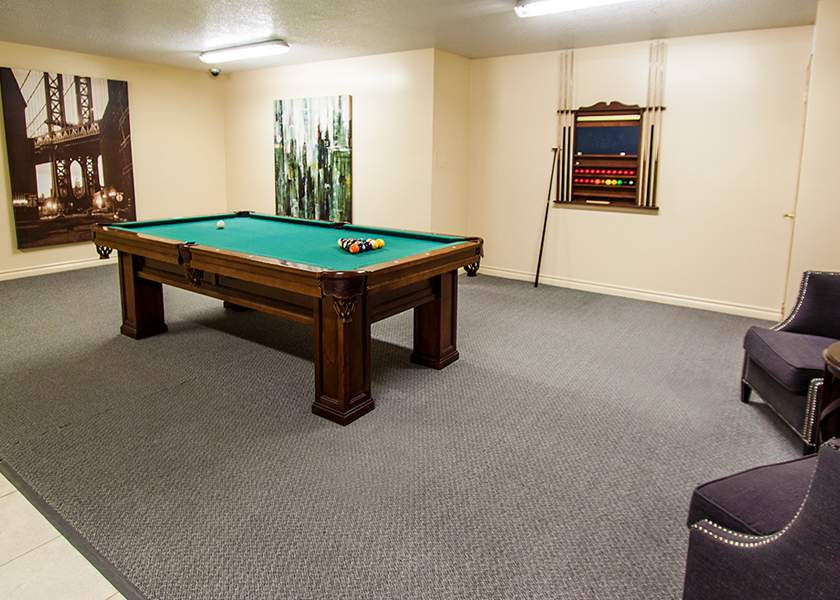 The Aster at the Royal Gardens - 130 Plains Road Burlington Ontario - Pool Table