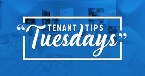 Drewlo Holdings | Tenant Tips