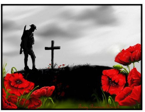 Remembrance Day - Why the Poppy?