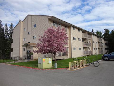 Sparwood 2 bedroom Apartment