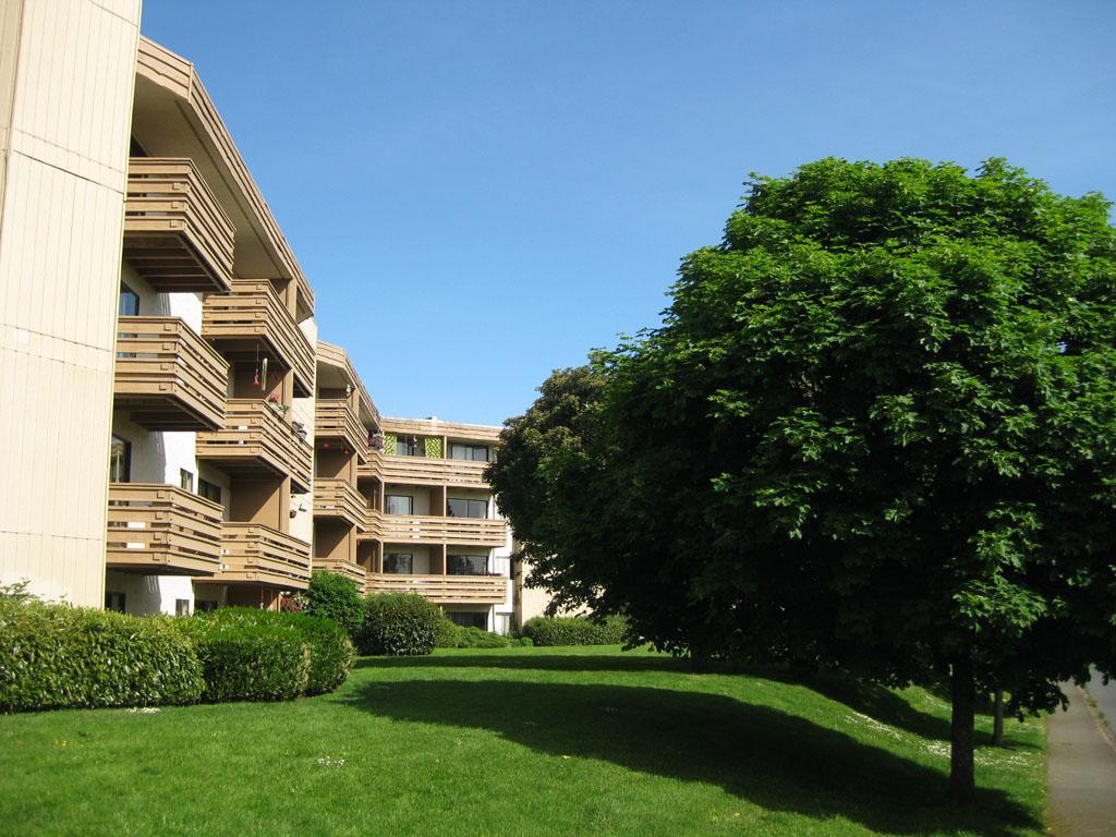Pleasant Maplewood Green Gateway Property Management Download Free Architecture Designs Scobabritishbridgeorg