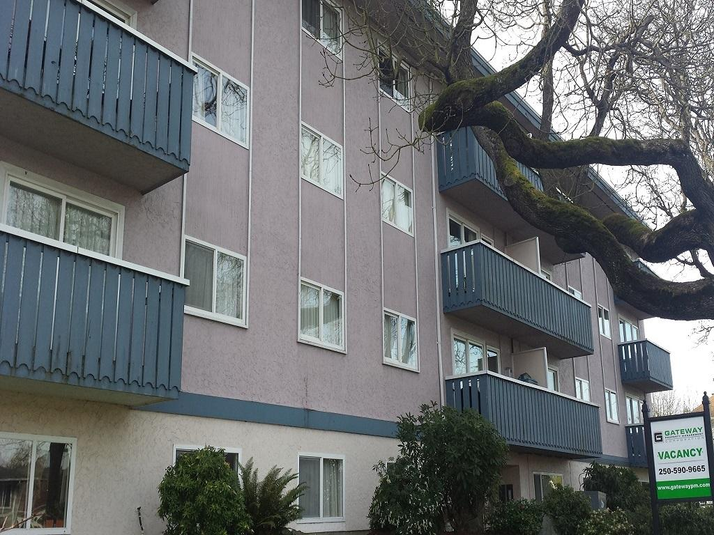 Incredible Ashton Oaks Apartments Gateway Property Management Download Free Architecture Designs Scobabritishbridgeorg