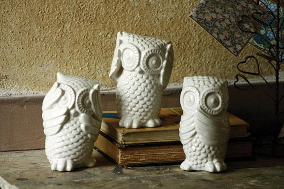 Or Pillow Can Really Make All The Difference In Your Home Chapters And Indigo Stores Have A Vast Array Of Decor Items With Owls To Fit Every Need