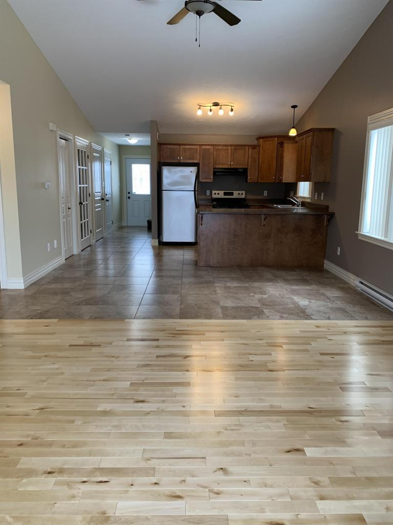 Open Concept (Kitchen, Living, Dining)