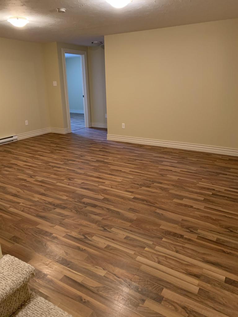 Bonus Room - Rec Room/Living Room (lower level)