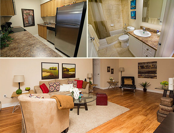 Renovated Apartment Suites
