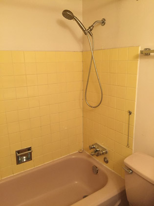 "The Pine ""before"" shower"