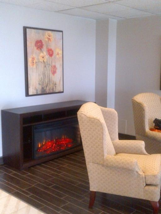 Fireplace in the Furnished Lobby