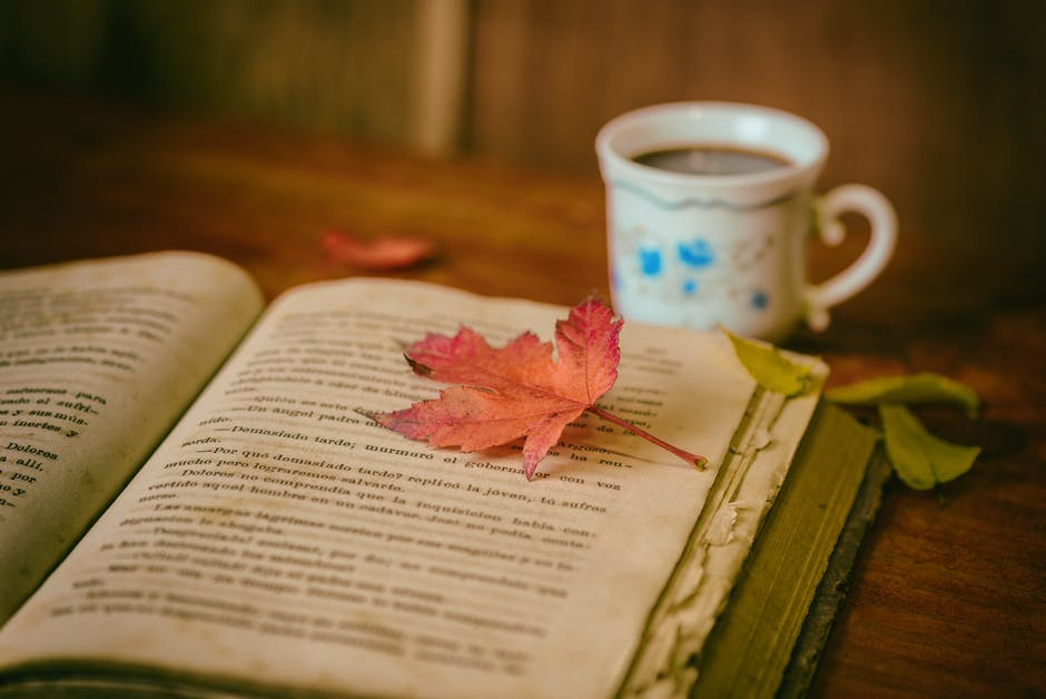 Cozy up to your favourite book this November