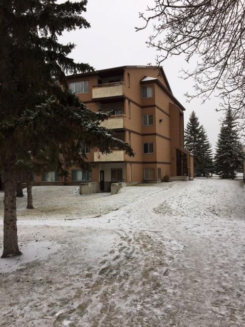 Edmonton Du nord-est 1 chambre à coucher Appartement
