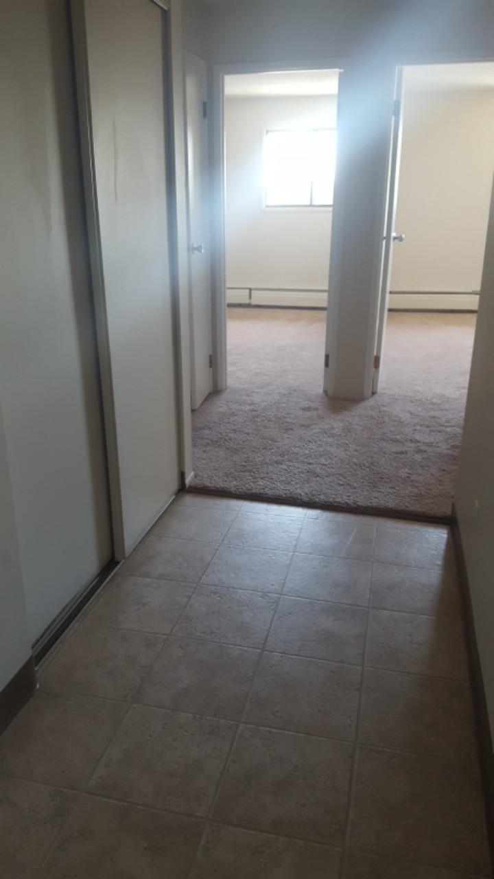 Edmonton Du Sud-est 2 chambre à coucher Appartement