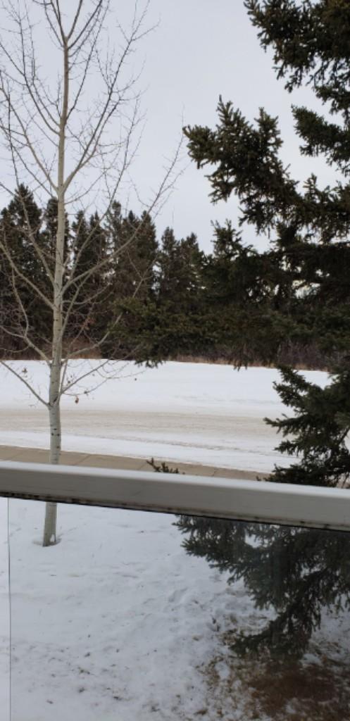 Red Deer Alberta Townhouse For Rent
