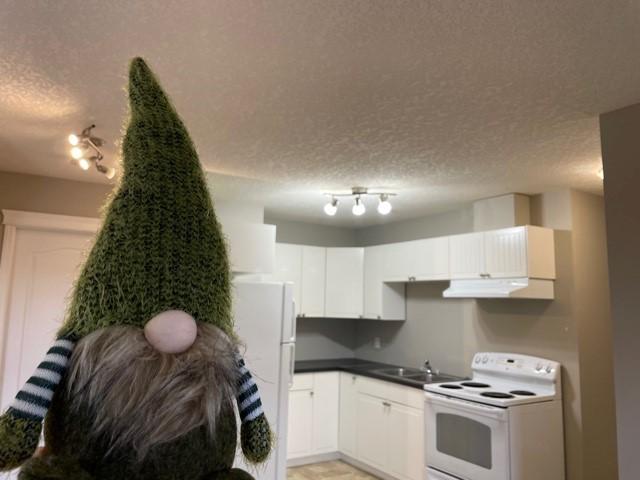Didsbury Alberta Apartment For Rent