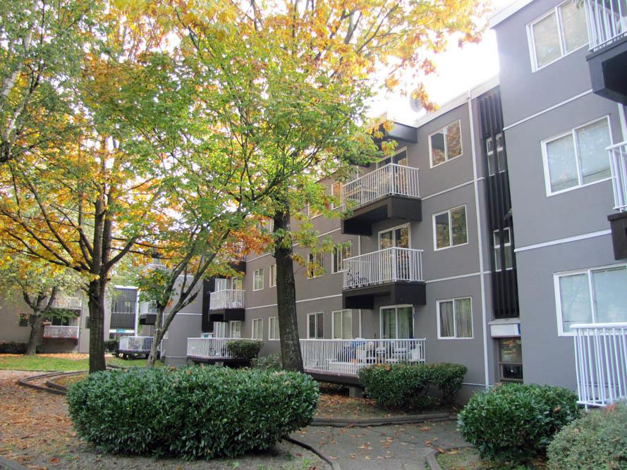 14955 - 107 A Avenue, Surrey, BC - $1,600 CAD/ month