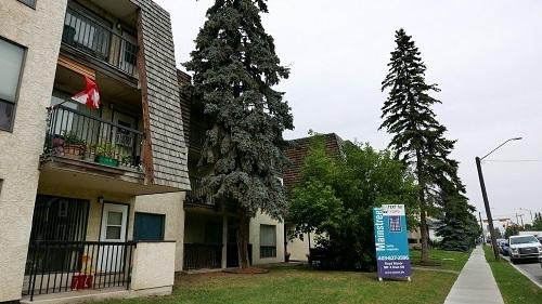 1607 4 Street NW, Calgary, AB - $975