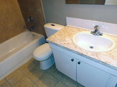 1497643750_03-08-2016_1056edmonton-apartments-for-rent-Salem-bathroom4-web.jpg