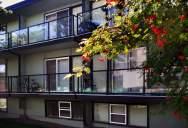 1576519571_grapes_exterior.jpg