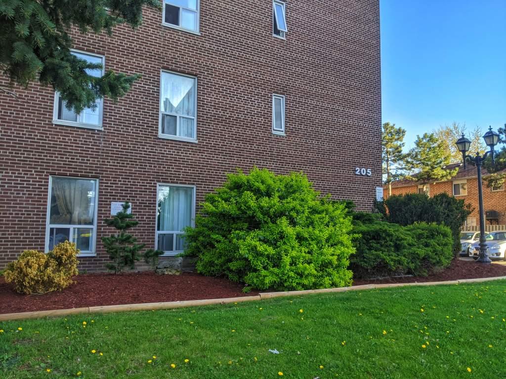 Brampton Ontario Apartment For Rent
