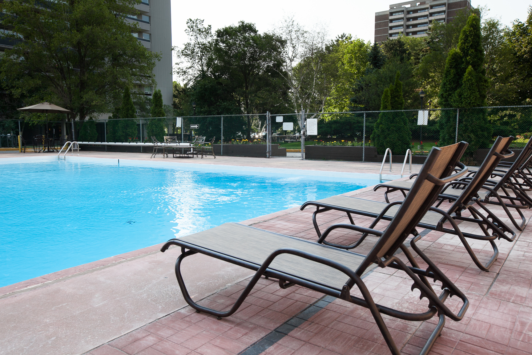Leslie And York Mills Apartments For Rent