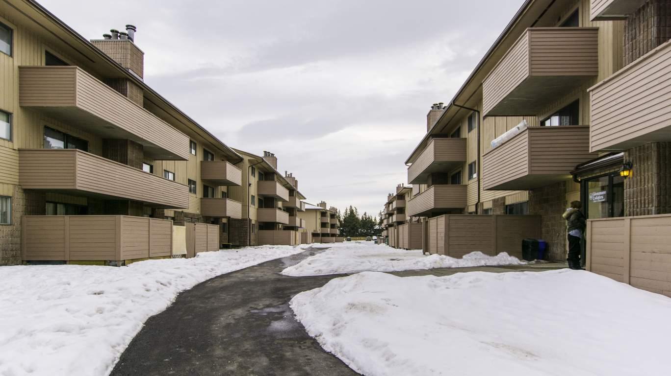 Calgary Du Sud-est 1 chambre à coucher Appartement À louer