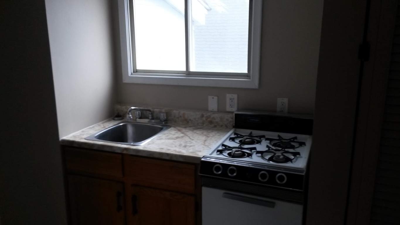 Apartments For Rent (1 Bedroom) - 111 Brock St S, Sarnia, ON