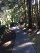 Woodgrove Pines