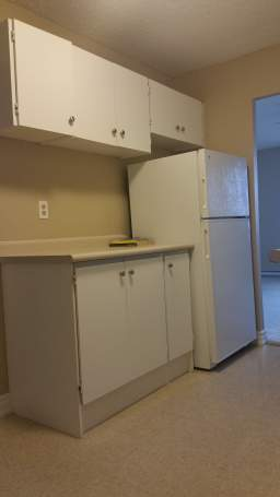 Apartment Building For Rent in  53 Adelaide Street North, Lindsay, ON