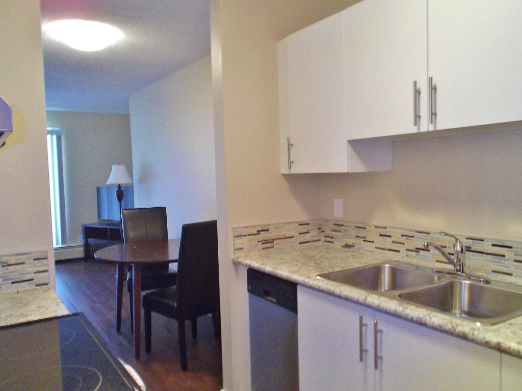 Brand new, renovated kitchen