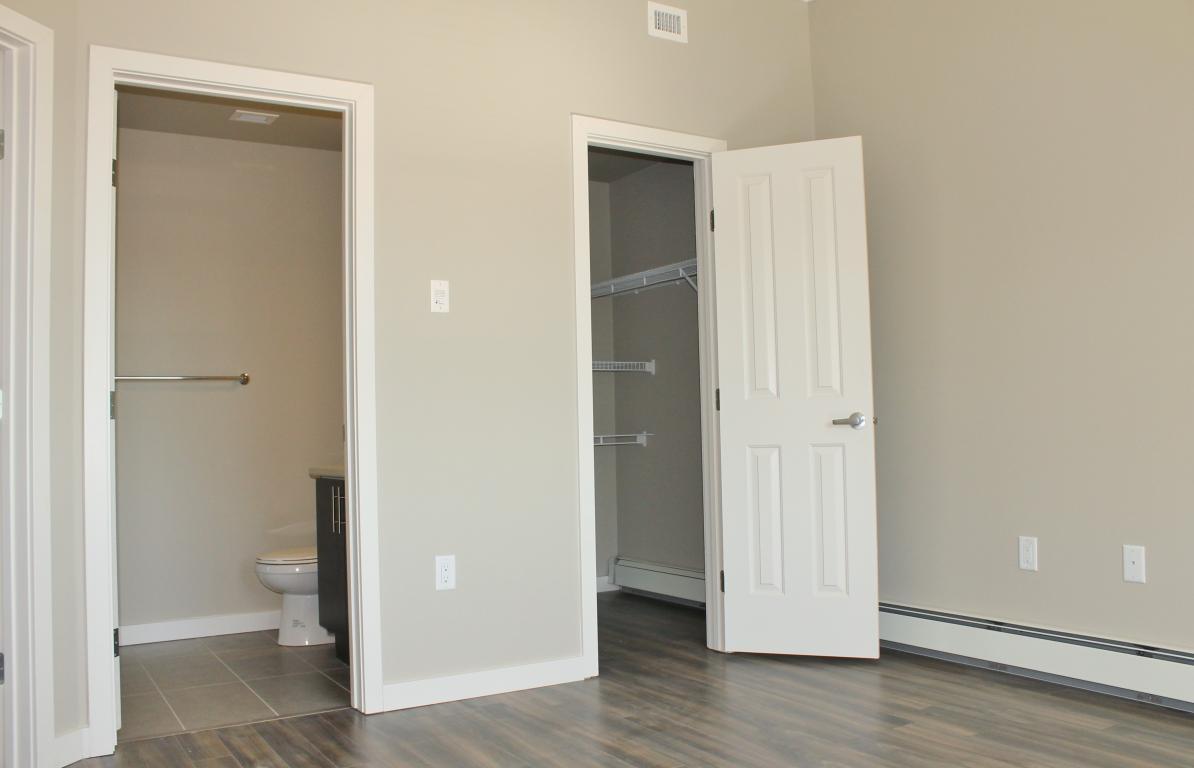 Master suite walk-in closet and full ensuite bathroom