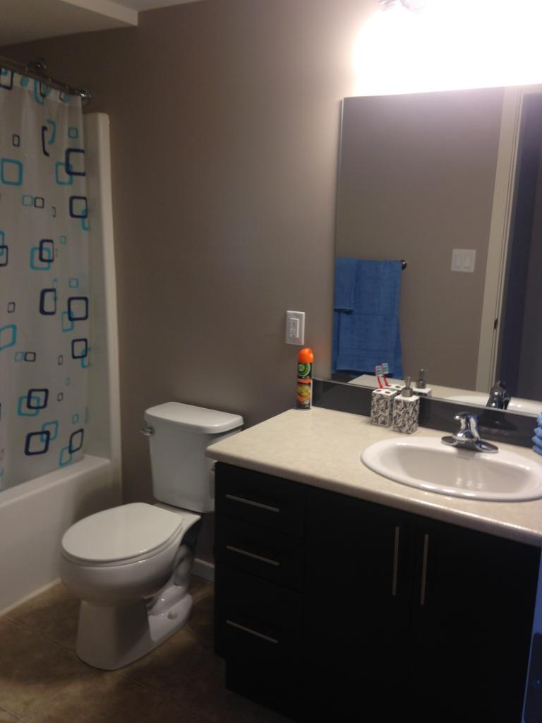 Second / guest bathroom