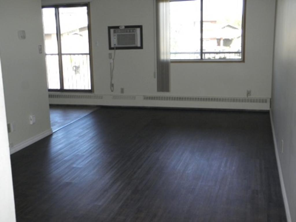 Brand new laminate flooring